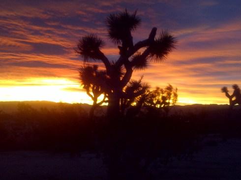 Sun Rise.  2012.  Be Custodians of the Light.  Remember.