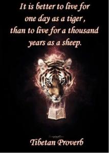 A tiger does not lose sleep over the opinion of sheep.