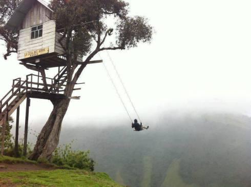 case arboles swing