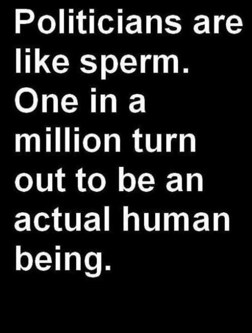 sperm and politicians
