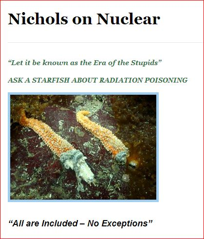 NICHOLS ON NUCLEAR  STARFISH STUPIDS