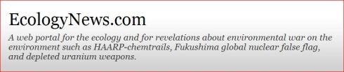 ECOLOGY NEWS 2013