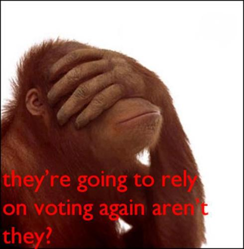 they are going to rely on voting again arent they