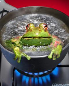 boiling frog